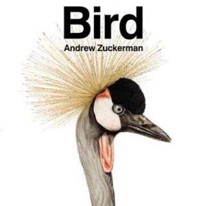 bird lover gift ideas book bird andrew zuckerman