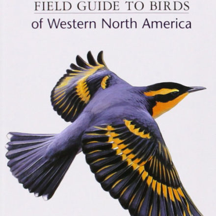 bird lover gift ideas sibley western guide