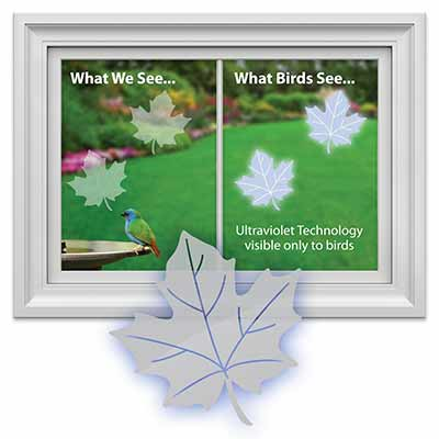 Bird Safety Window Decal Clings Because Birds - Window decals for bird safety
