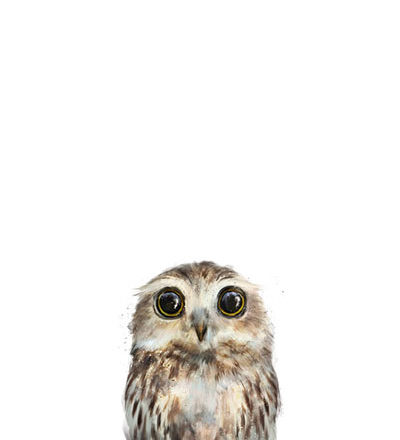 little owl painting