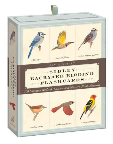sibley birding flash cards