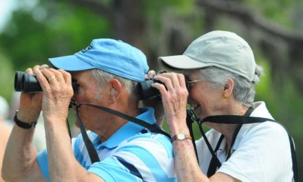 6 Reasons Birding is Not Just for Old People