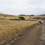 Birding at Rancho Sierra Vista