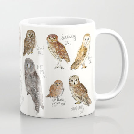 assorted owl mug