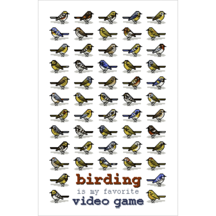 birding is my favorite video game