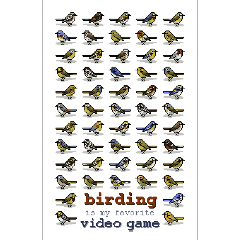 Why Birding Is My Favorite Video Game – bird and moon