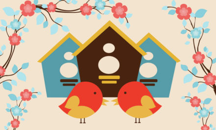 Guide: Building the Perfect Birdhouse