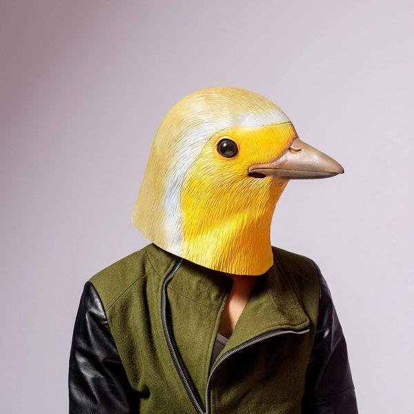 robin mask