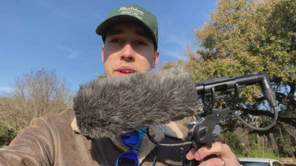 bird-recording-video-thumbnail