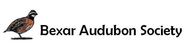 bexar audubon society logo